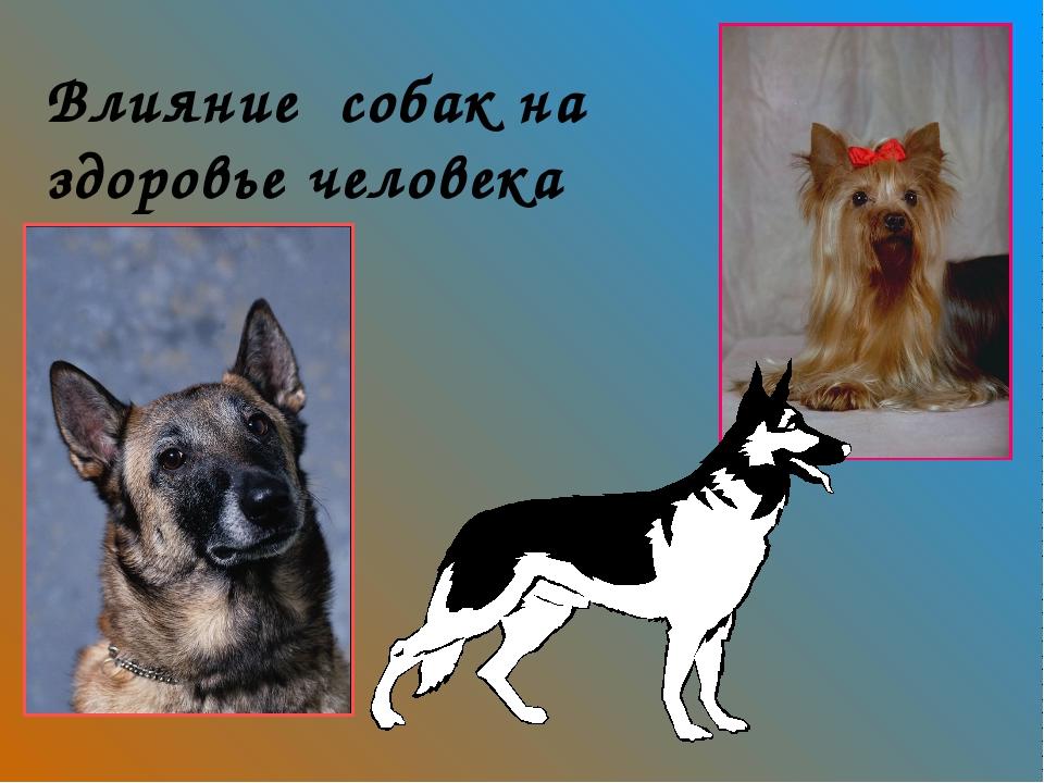 Влияние собак на здоровье человека