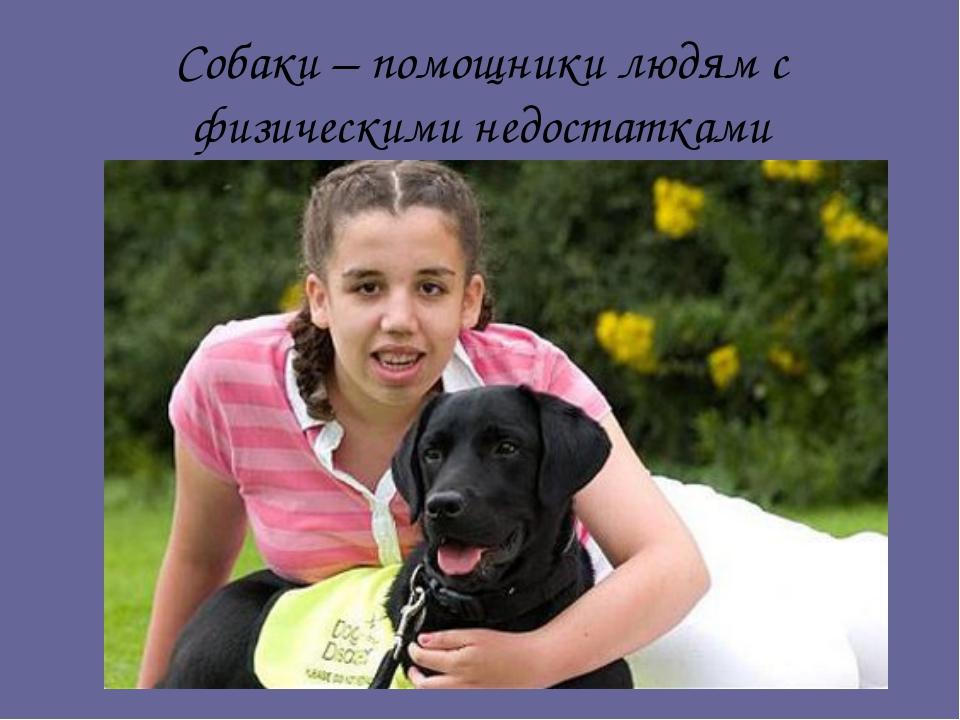 Собаки – помощники людям с физическими недостатками