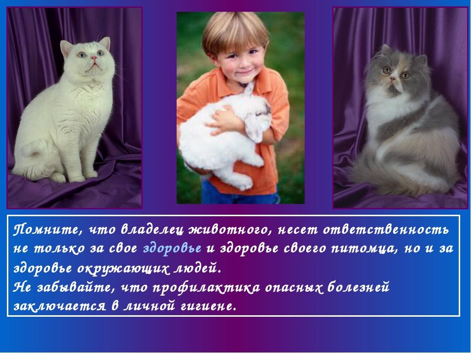 Помните, что владелец животного, несет ответственность не только за свое здор...