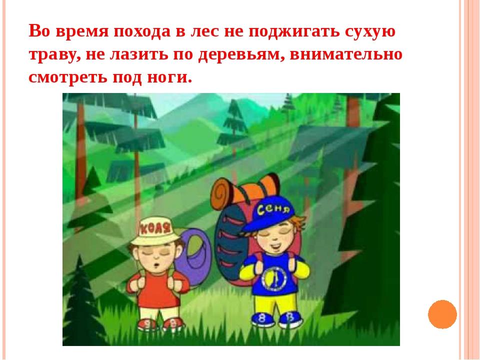 Во время похода в лес не поджигать сухую траву, не лазить по деревьям, внимат...