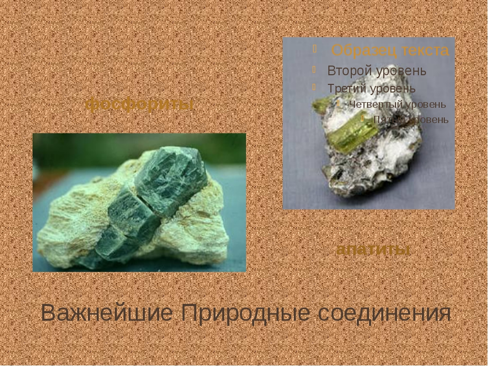 Важнейшие Природные соединения фосфориты апатиты