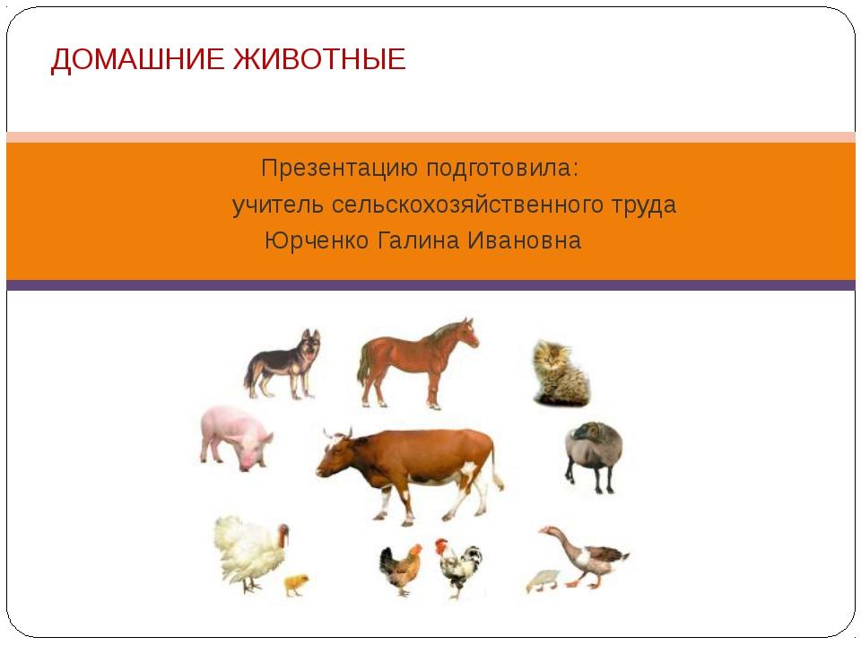 Презентацию подготовила: учитель сельскохозяйственного труда Юрченко Галина И...