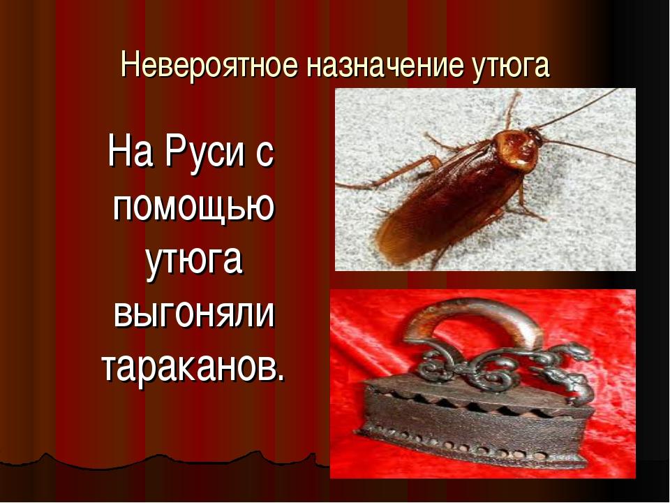 Невероятное назначение утюга На Руси с помощью утюга выгоняли тараканов.