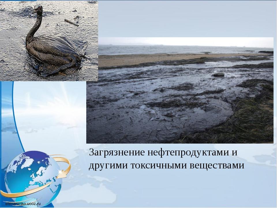 Загрязнение нефтепродуктами и другими токсичными веществами