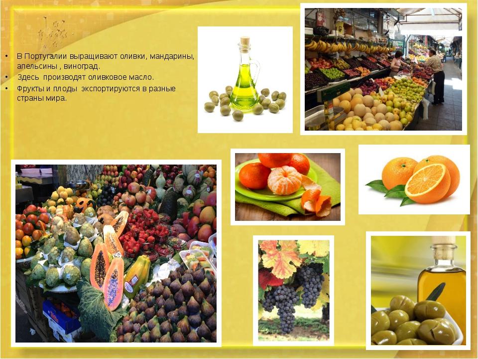 В Португалии выращивают оливки, мандарины,  апельсины , виноград. В Португал...