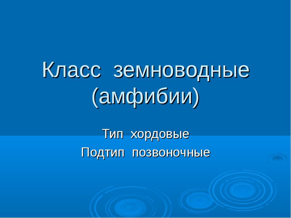 Класс земноводные (амфибии) Тип хордовые Подтип позвоночные