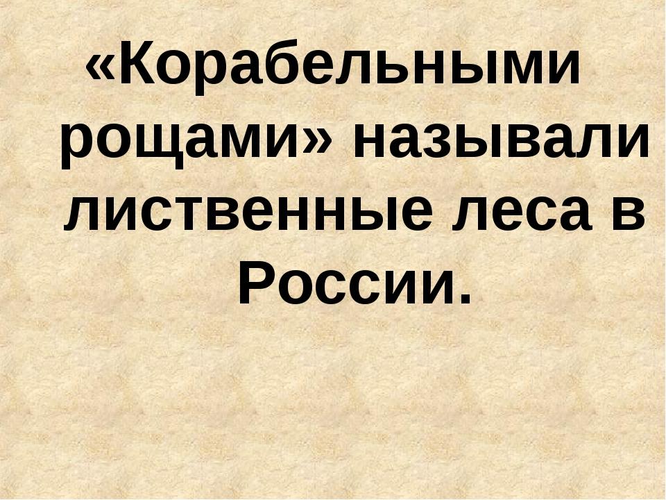 «Корабельными рощами» называли лиственные леса в России.