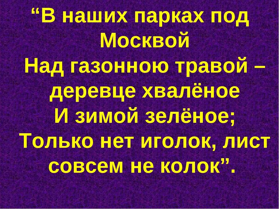"""""""В наших парках под Москвой Над газонною травой – деревце хвалёное И зимой зе..."""