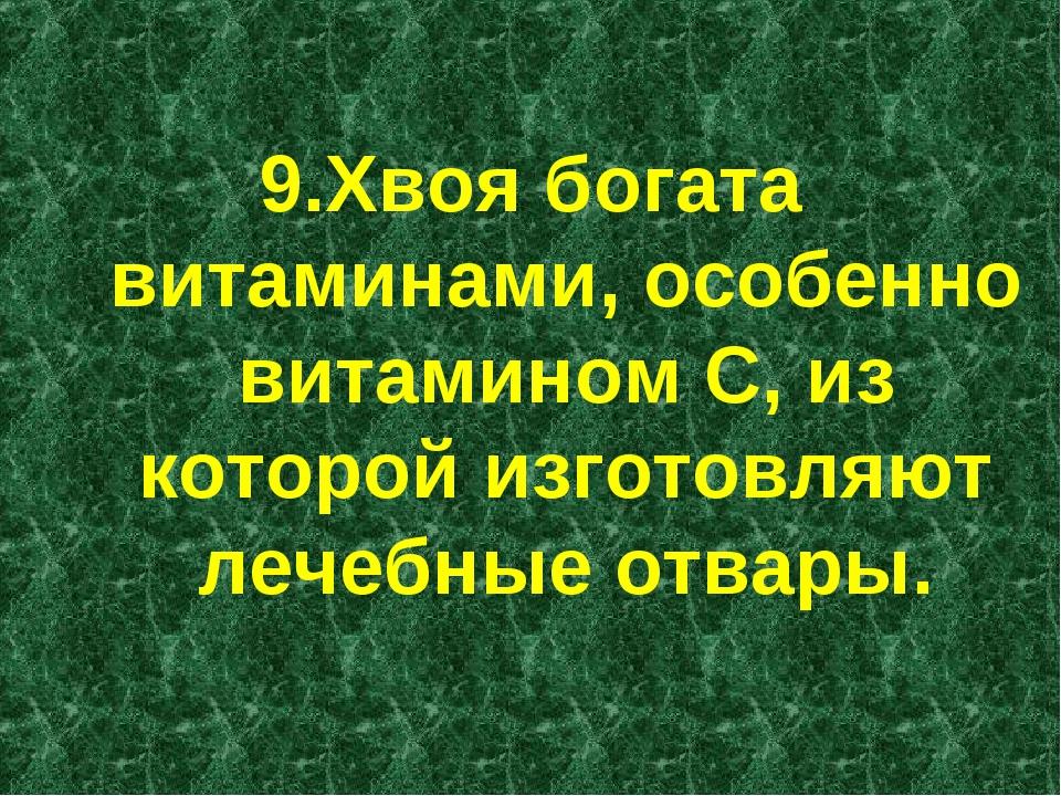 9.Хвоя богата витаминами, особенно витамином С, из которой изготовляют лечеб...