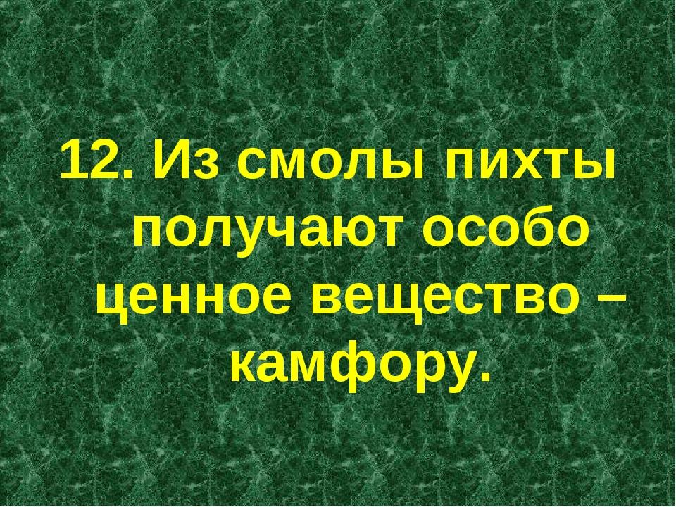 12. Из смолы пихты получают особо ценное вещество – камфору.