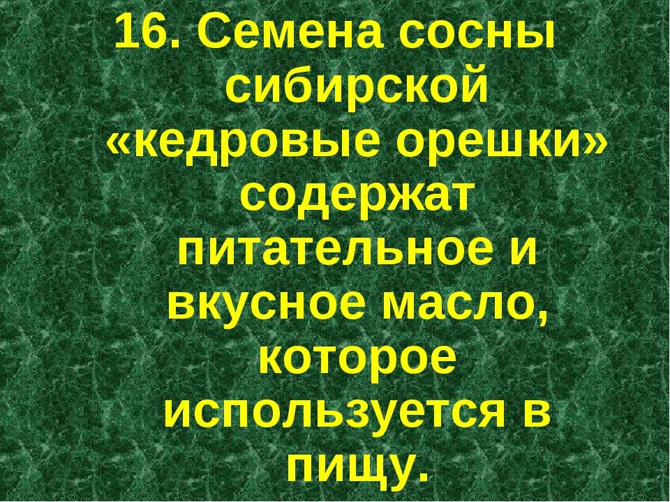 16. Семена сосны сибирской «кедровые орешки» содержат питательное и вкусное м...