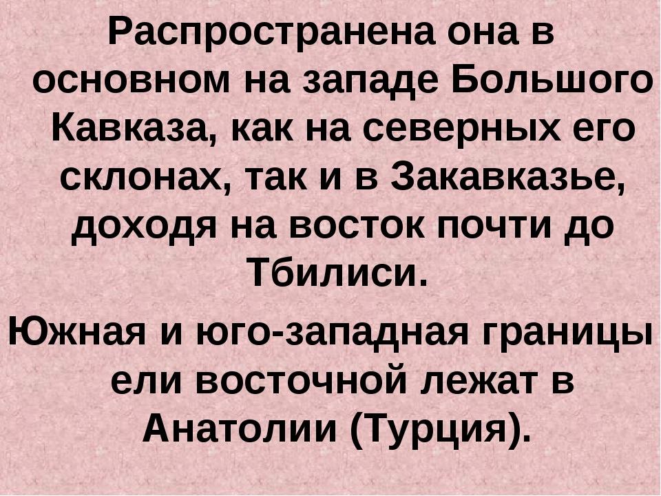 Распространена она в основном на западе Большого Кавказа, как на северных его...