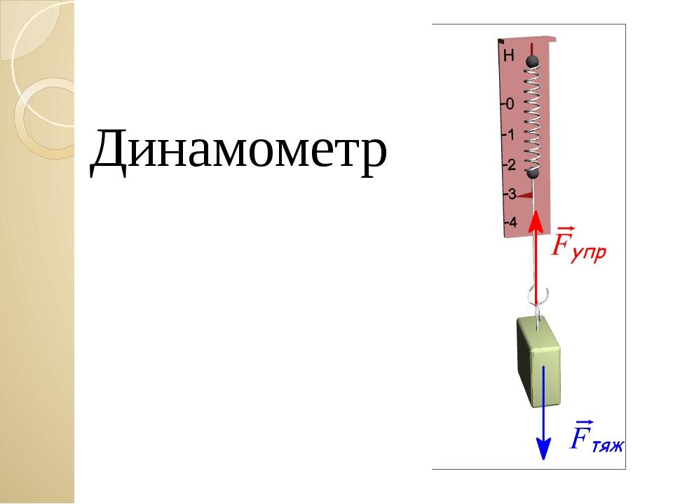 Динамометр Загайнова С.С