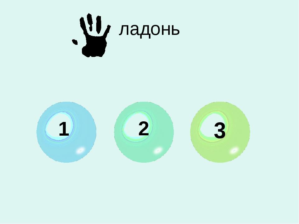 ладонь 1 2 3