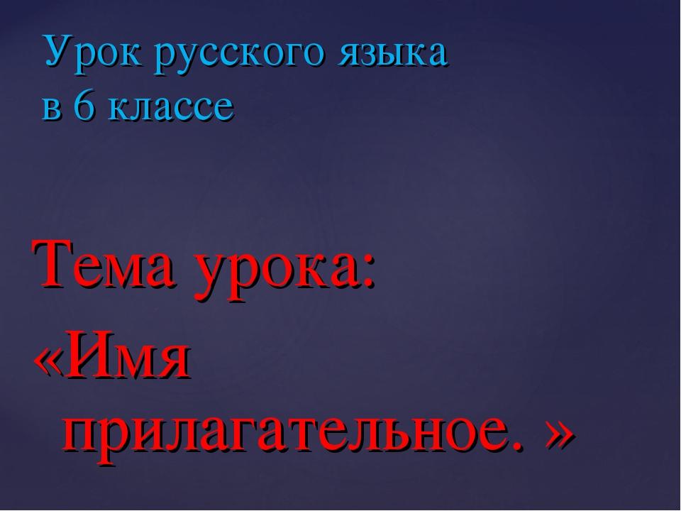 Тема урока: «Имя прилагательное. » Урок русского языка в 6 классе
