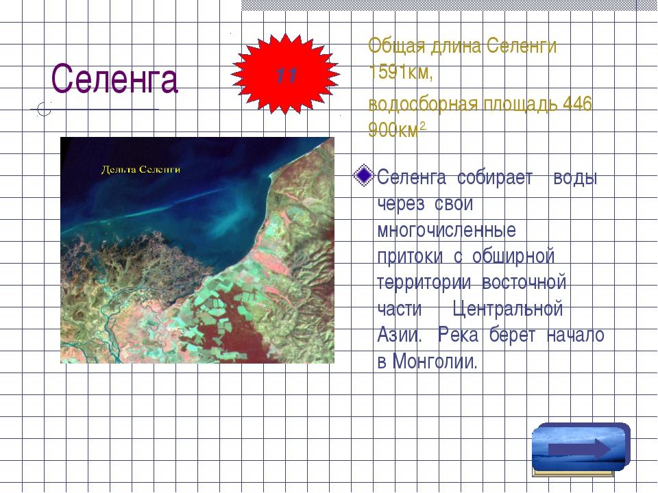Селенга Селенга собирает воды через свои многочисленные притоки с обширной те...