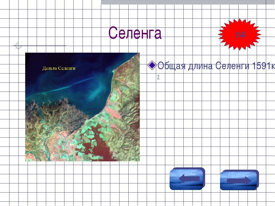 Селенга Общая длина Селенги 1591км, водосборная площадь 446900км2. 14