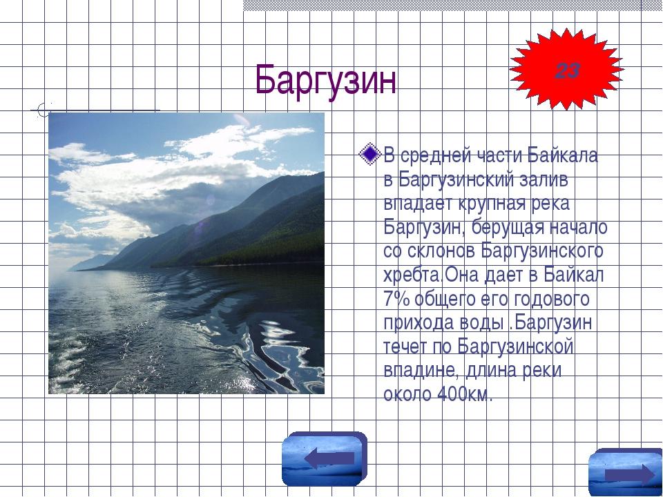 Баргузин В средней части Байкала в Баргузинский залив впадает крупная река Ба...