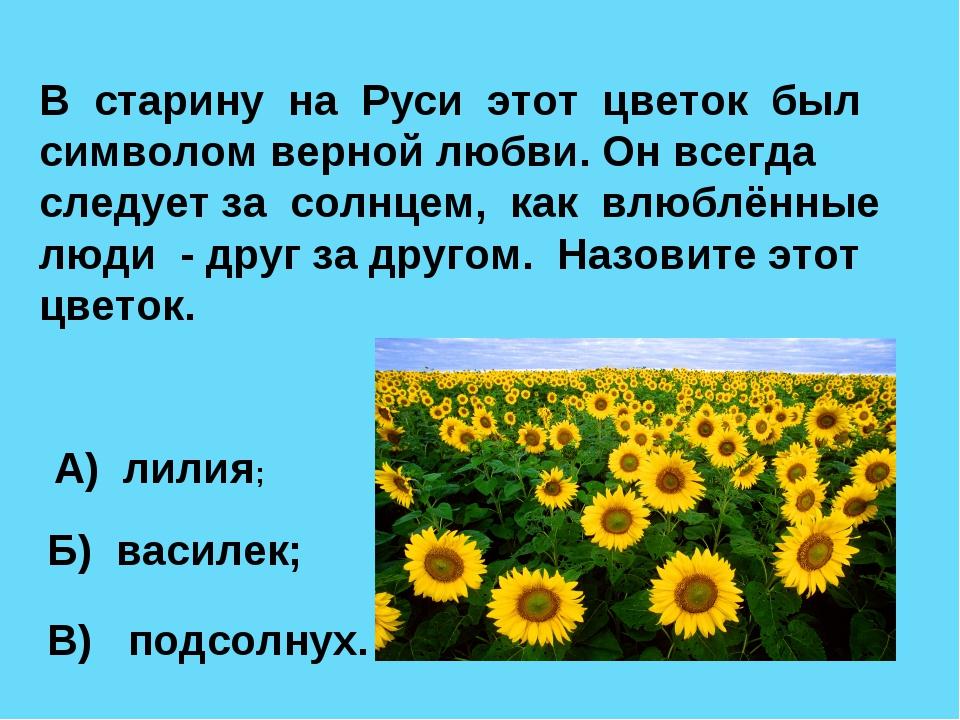 В старину на Руси этот цветок был символом верной любви. Он всегда следует за...