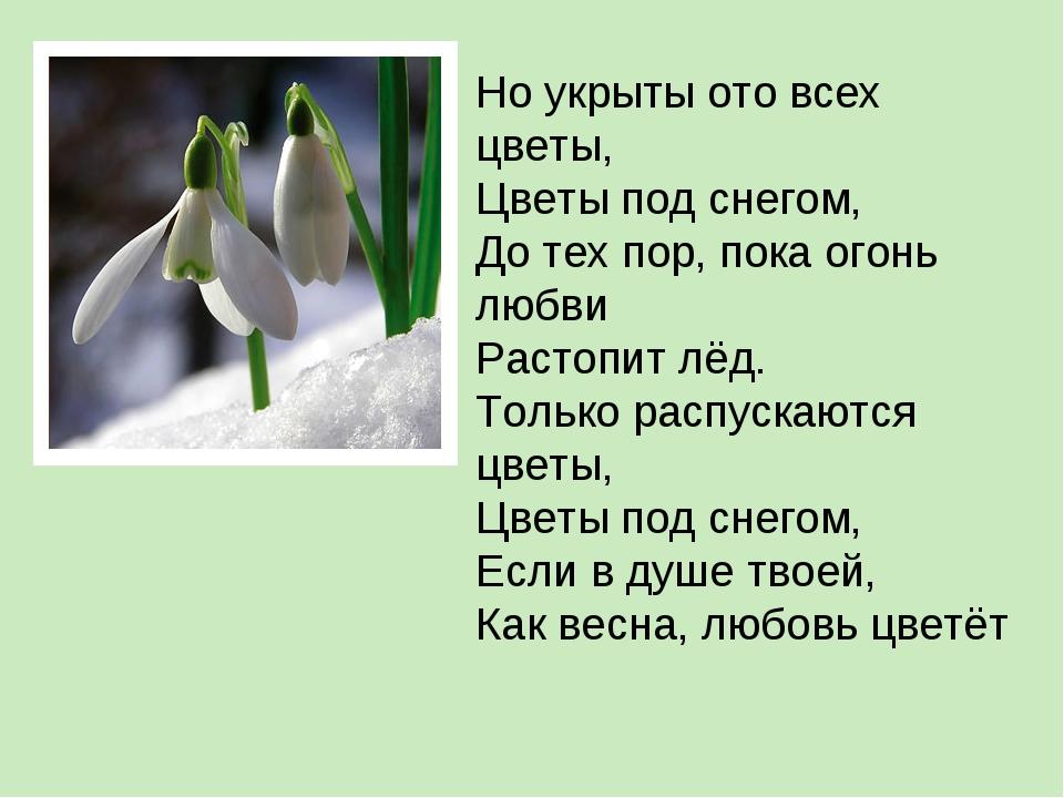 Но укрыты ото всех цветы, Цветы под снегом, До тех пор, пока огонь любви Раст...