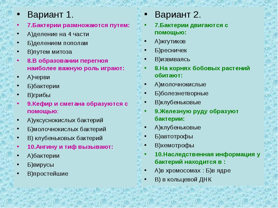 Вариант 1. 7.Бактерии размножаются путем: А)деление на 4 части Б)делением поп...