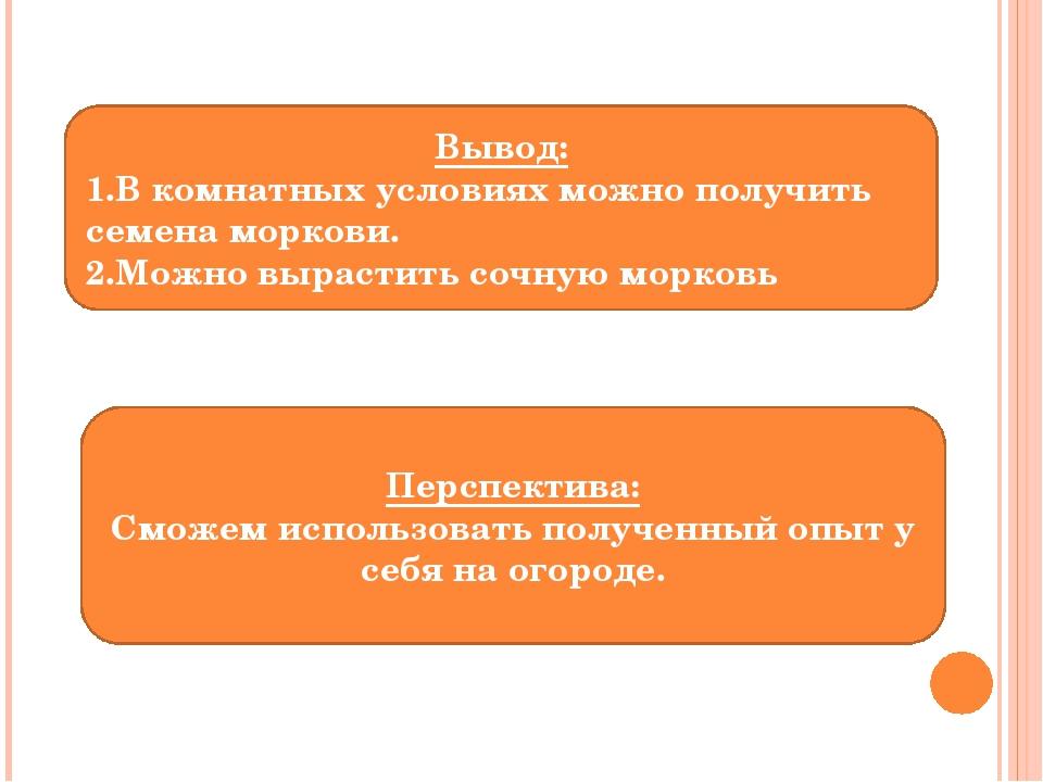 Вывод: 1.В комнатных условиях можно получить семена моркови. 2.Можно вырастит...