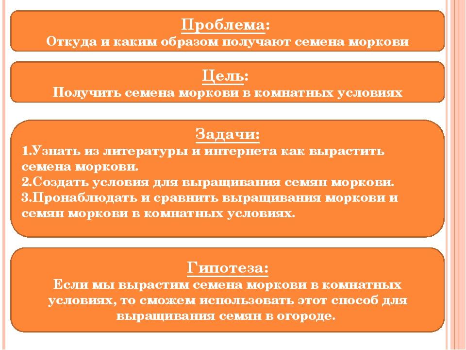 Проблема: Откуда и каким образом получают семена моркови Цель: Получить семен...