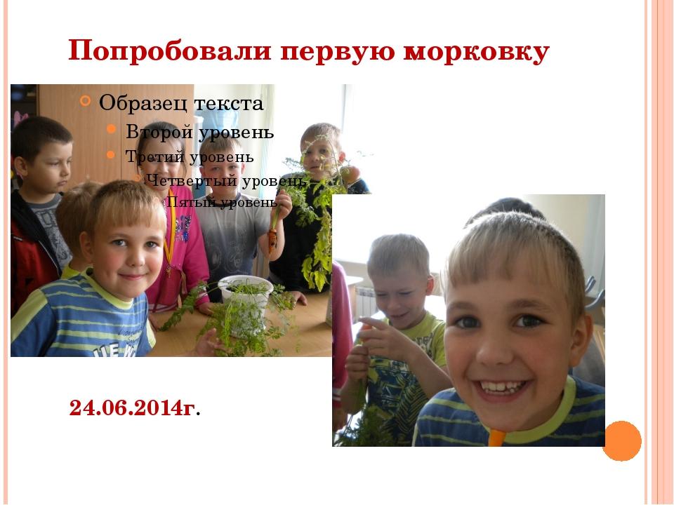 Попробовали первую морковку 24.06.2014г.