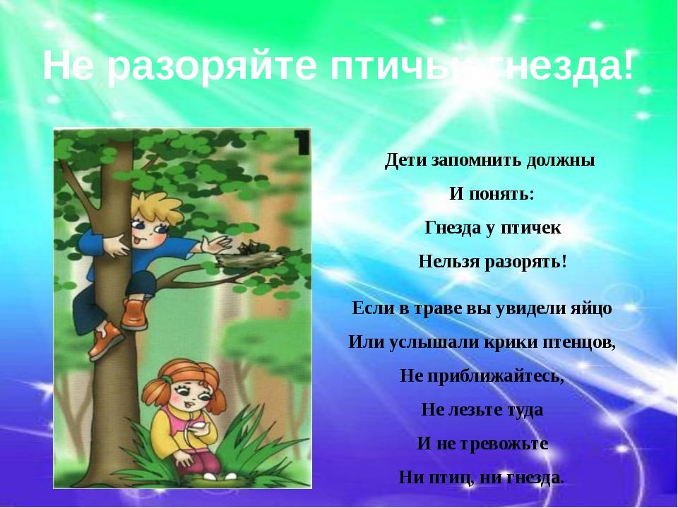 Не разоряйте птичьи гнезда! Дети запомнить должны И понять: Гнезда у птичек Н...