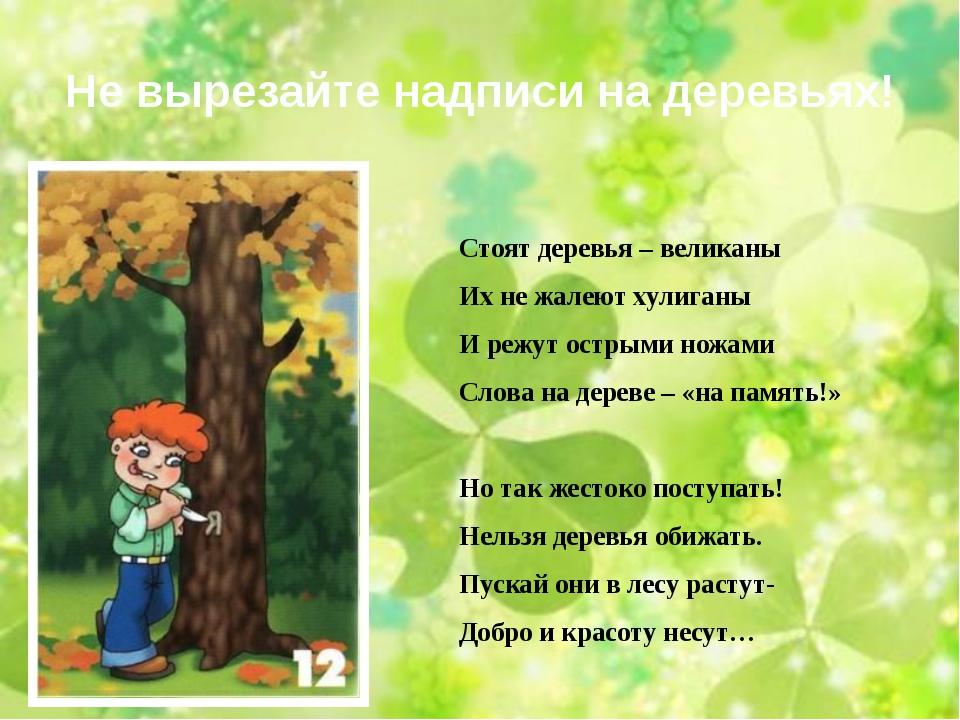 Не вырезайте надписи на деревьях! Стоят деревья – великаны Их не жалеют хулиг...