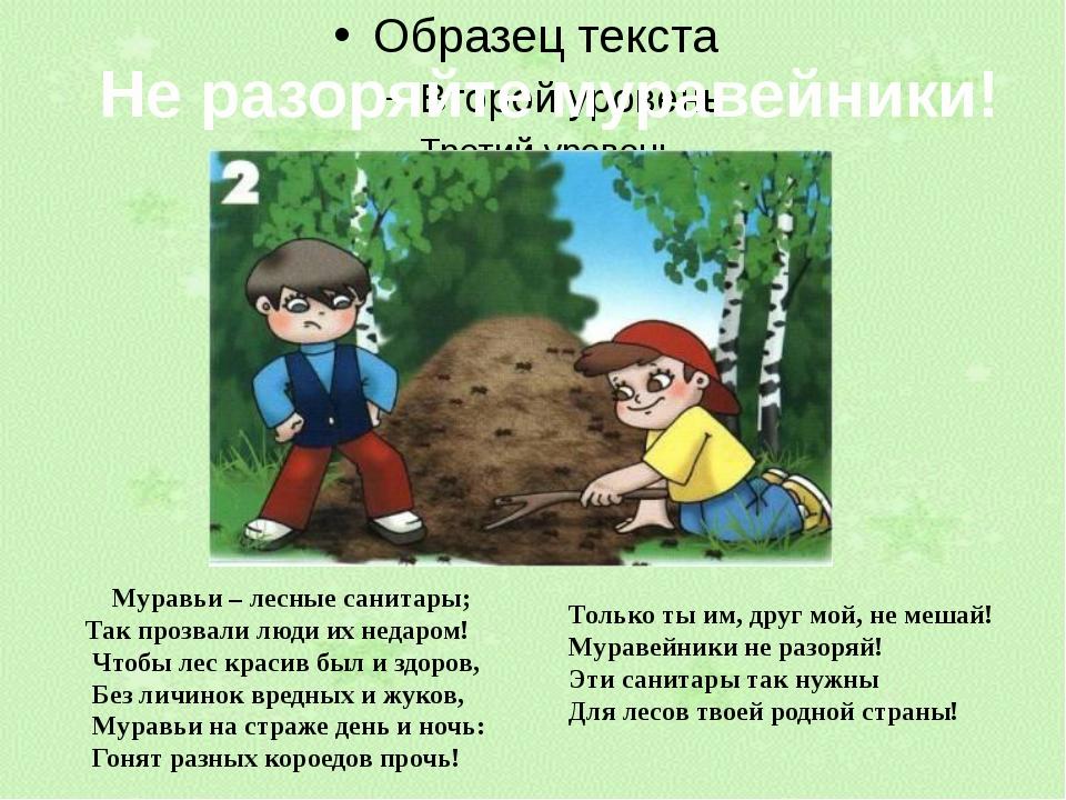 Не разоряйте муравейники! Муравьи – лесные санитары; Так прозвали люди их нед...