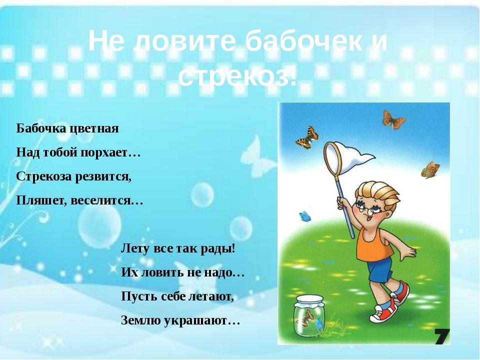 Не ловите бабочек и стрекоз! Бабочка цветная Над тобой порхает… Стрекоза рез...