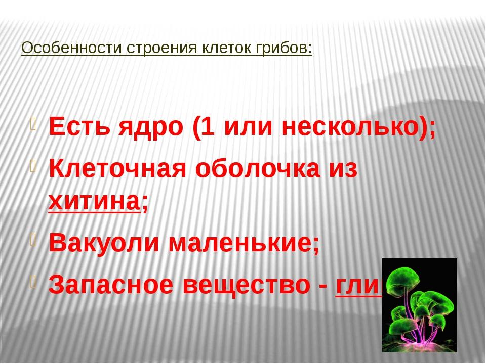 Особенности строения клеток грибов: Есть ядро (1 или несколько); Клеточная об...