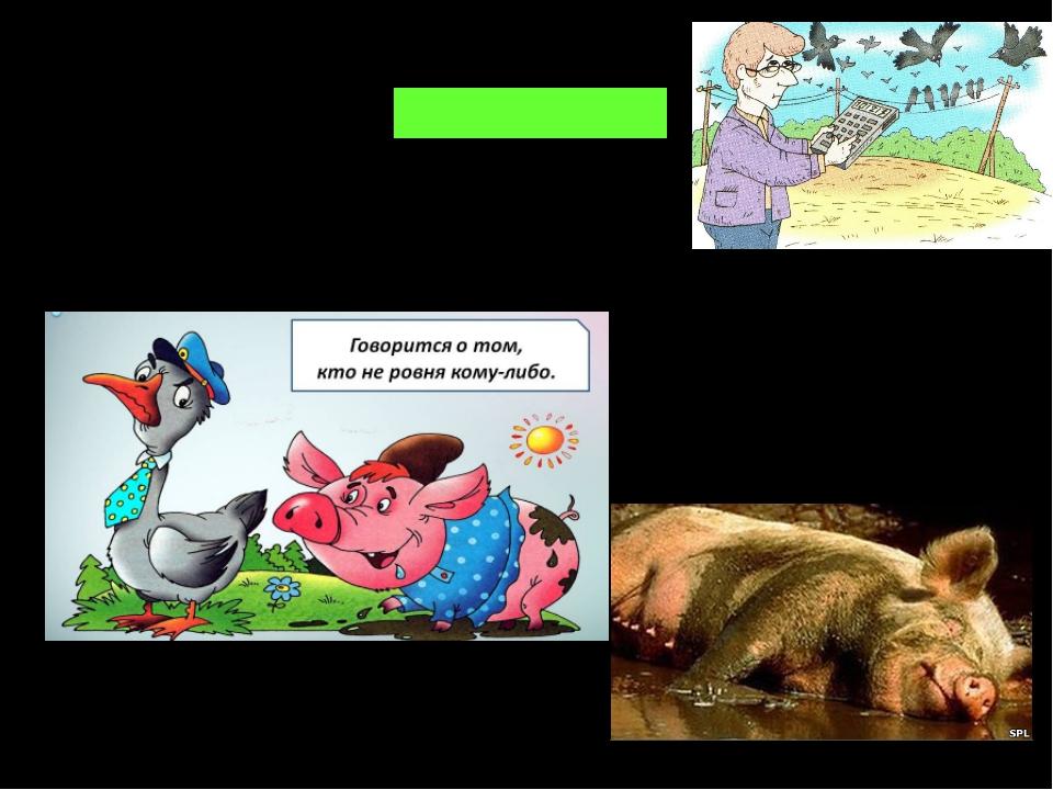 ворон считать - отвлекаться гусь свинье не товарищ; свинья всегда грязь найдёт;
