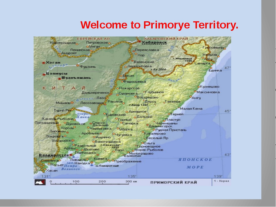 Welcome to Primorye Territory. has the territory of 1659 thousand square km.