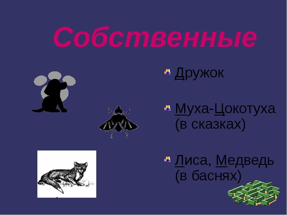 Собственные Дружок Муха-Цокотуха (в сказках) Лиса, Медведь (в баснях)