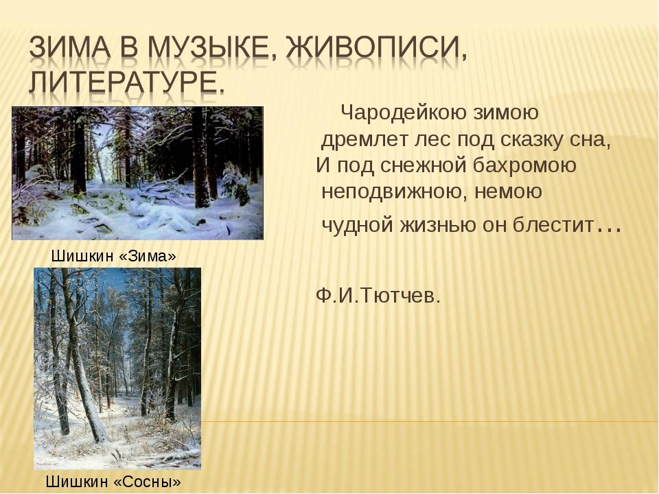Шишкин «Зима» Шишкин «Сосны» Чародейкою зимою дремлет лес под сказку сна, И п...