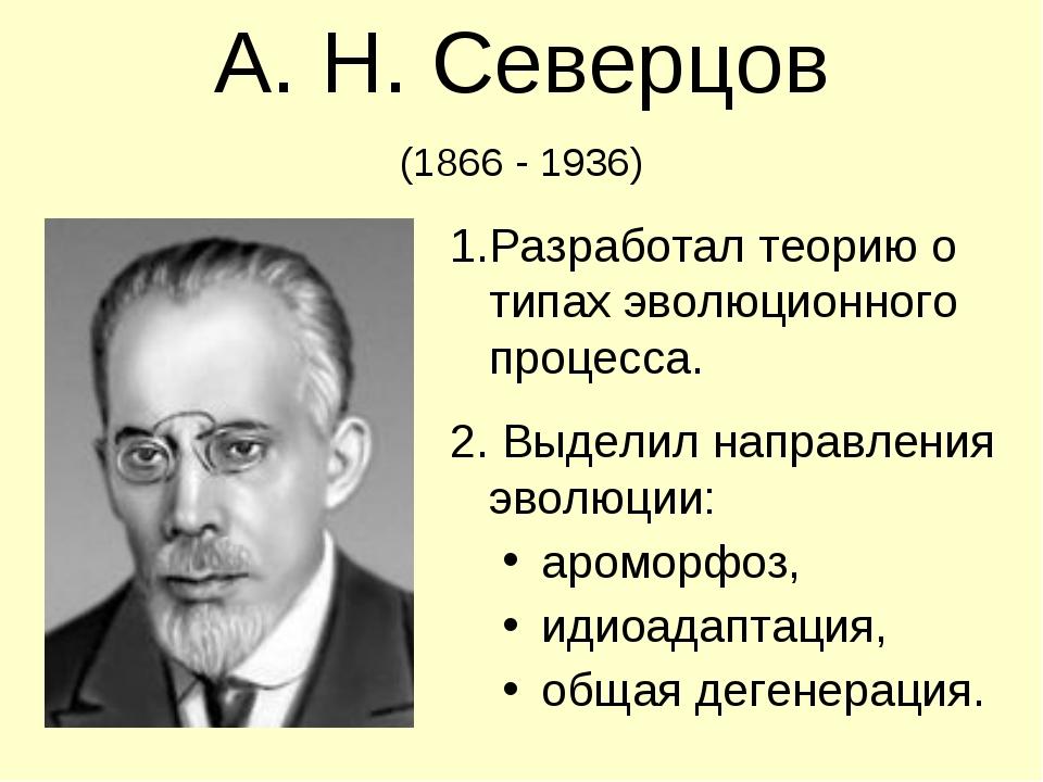 А. Н. Северцов (1866 - 1936) Разработал теорию о типах эволюционного процесса...
