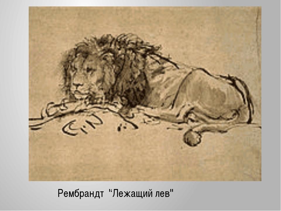 Рембрандт ''Лежащий лев''