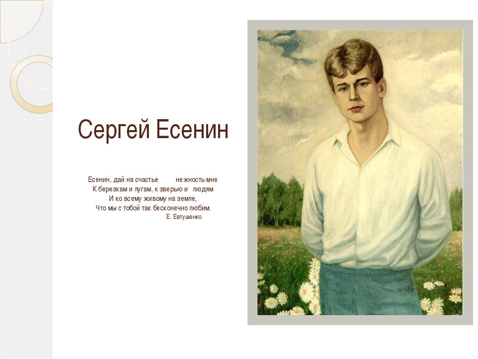 Сергей Есенин  Есенин, дай на счастье нежность мне К березкам и лугам, к зв...