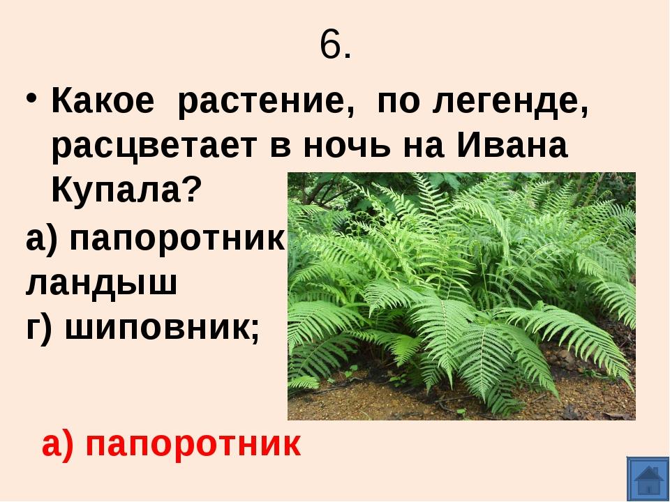 6. Какое растение, по легенде, расцветает в ночь на Ивана Купала? а) папоротн...