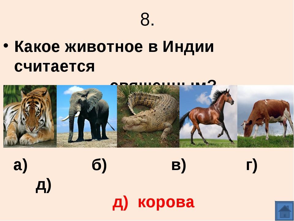 8. Какое животное в Индии считается священным? д) корова а) б) в) г) д)