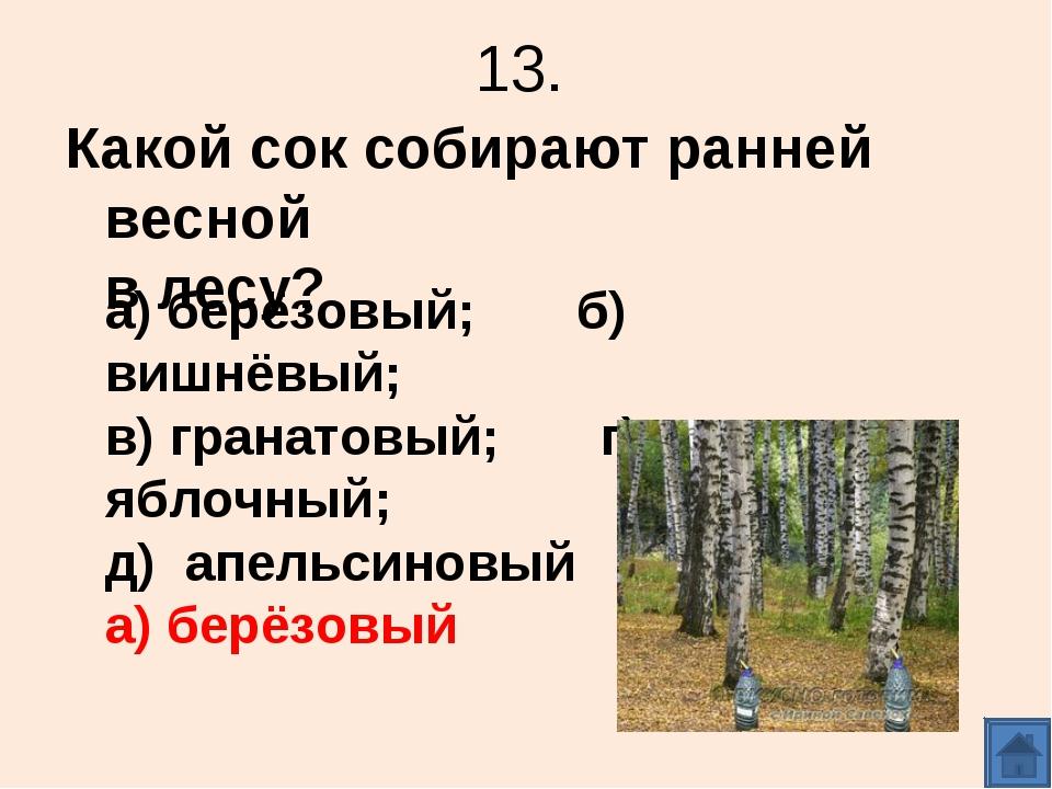 13. Какой сок собирают ранней весной в лесу? а) берёзовый; б) вишнёвый; в) гр...