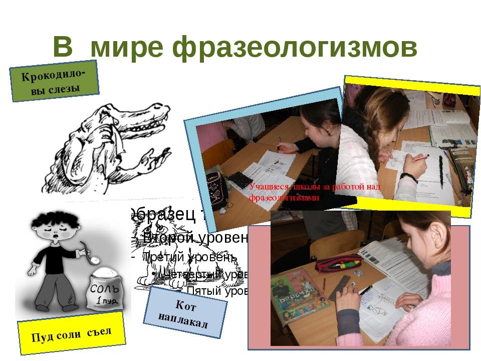 В мире фразеологизмов Учащиеся школы за работой над фразеологизмами Кот напла...