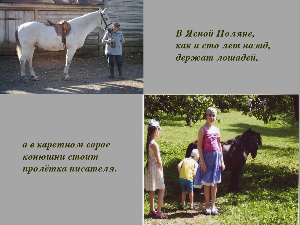 В Ясной Поляне, как и сто лет назад, держат лошадей, а в каретном сарае конюш...