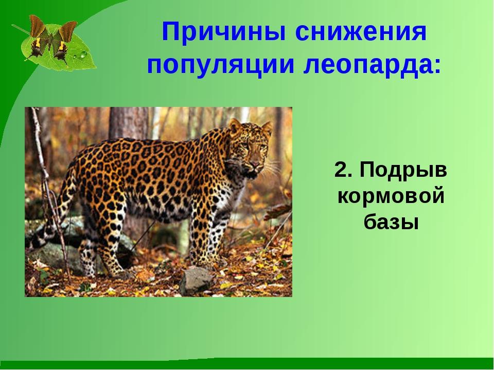 Причины снижения популяции леопарда: 2. Подрыв кормовой базы