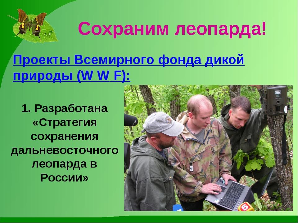 Сохраним леопарда! Проекты Всемирного фонда дикой природы (W W F): 1. Разрабо...