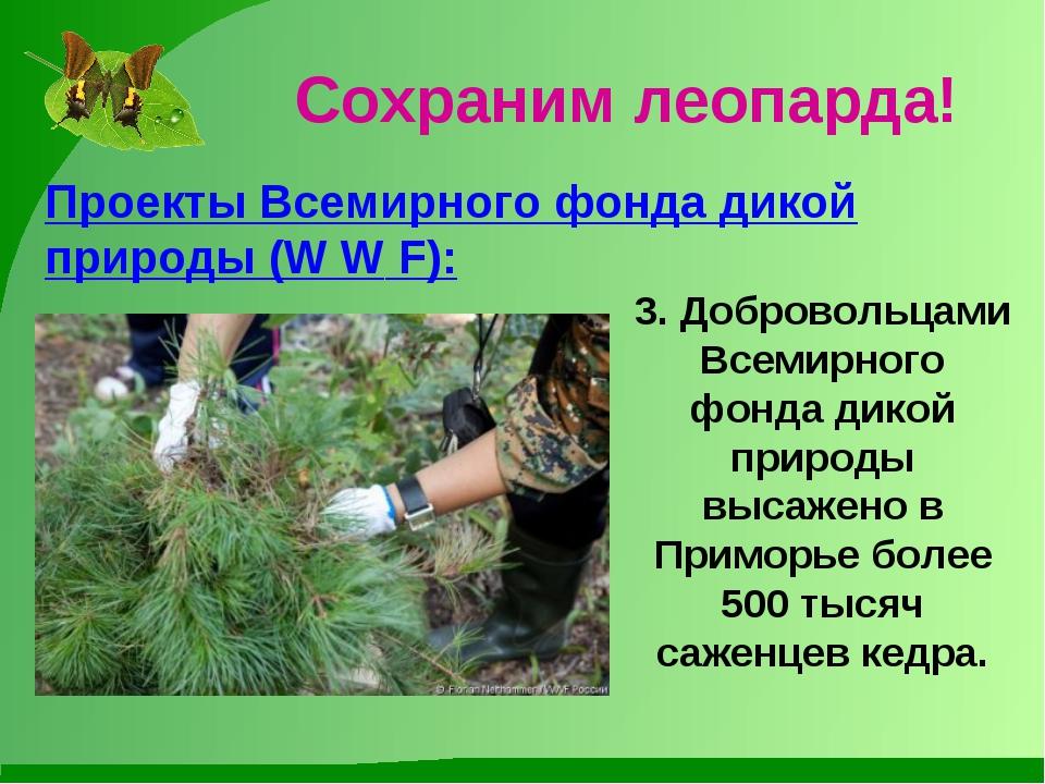 Сохраним леопарда! Проекты Всемирного фонда дикой природы (W W F): 3. Доброво...