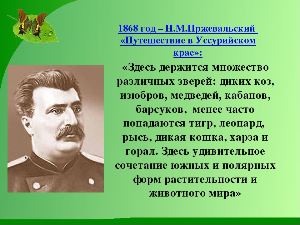 1868 год – Н.М.Пржевальский «Путешествие в Уссурийском крае»: «Здесь держится...