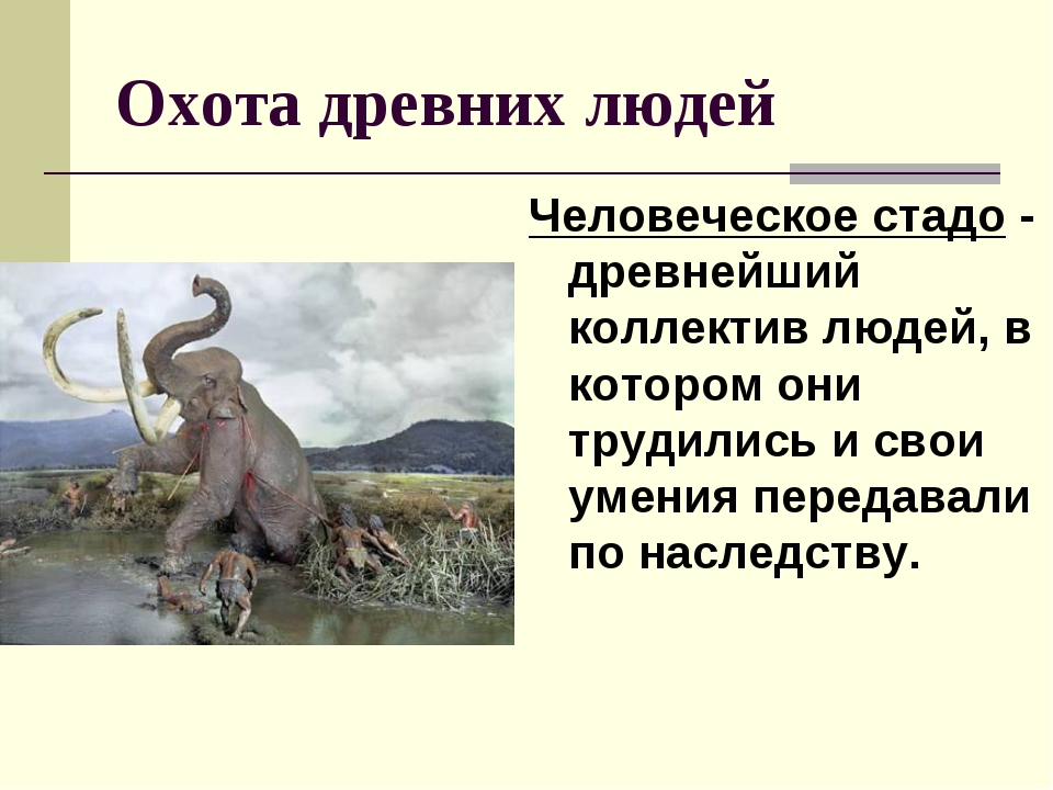 Охота древних людей Человеческое стадо - древнейший коллектив людей, в которо...